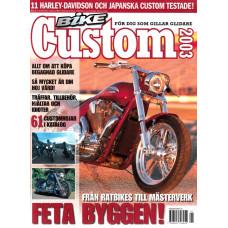 Bike Custom 2003 nr8
